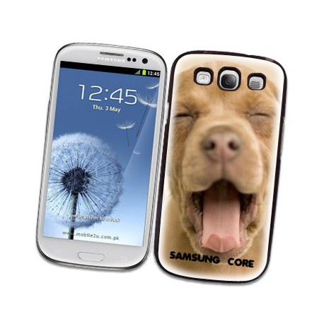 coque samsung core plus